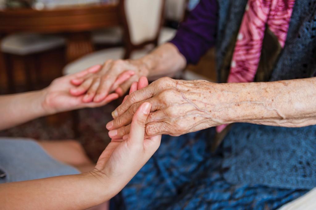 companionship personal care services brighton hove the